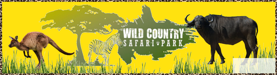 Wild Country Safari Park